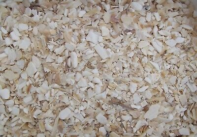 1 kg LUCKY REPTILE BIO CALCIUM SEPIA CRUSHED STÜCKE CRUSH