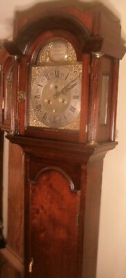 "Antique Mahogany "" Gateshad "" Brass Dial 8 Day Grandfather / Longcase Clock"