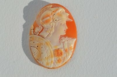 Fantastic Antique Victorian Hand Carved  Shell Cameo Depicts Soldier In Helmet