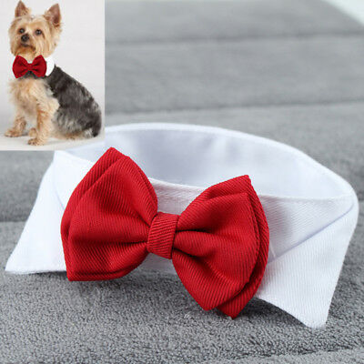 Elegant Pet For Small Dog Bowknot Necktie Dog Puppy Cat Bow Tie Cute Solid