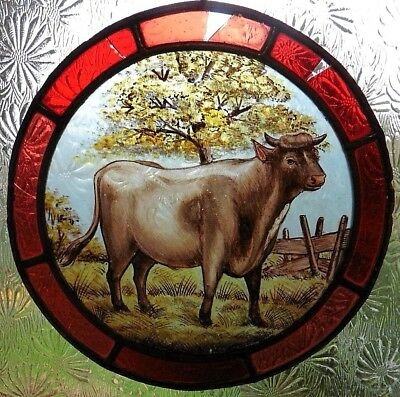 Victorian ? Antique Round Stained Glass Painted Panel Showing A Bull In Field