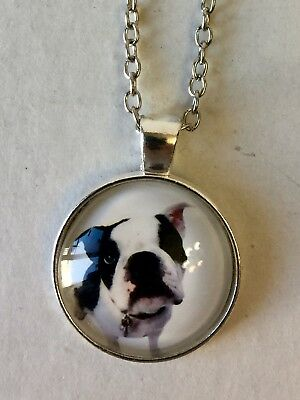 Boston Terrier Pendent Necklace