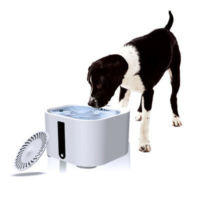 2L Large Automatic Water Drinker Fountain Pet Dogs Cat Puppy Auto Feeder Machine