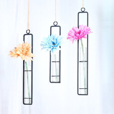 Wrought Iron Hanging Test Tube Flower Vase Air Planter Hydroponic Pot Decor