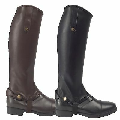 Brogini Treviso Synthetic Stretch Gaiters Horse Riding Chaps Regular Height