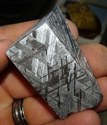 Amazing 164 Gm. Muonionalusta Etched Meteorite Quad Cut