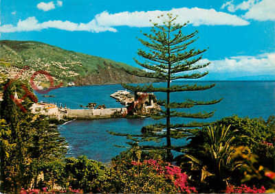Picture Postcard- Madeira, Funchal, Eastern View
