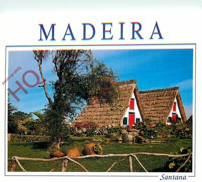 Picture Postcard- Madeira, Santana, Typical Houses
