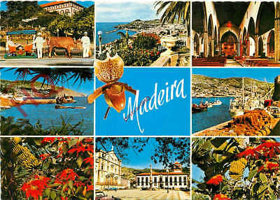 Picture Postcard- Madeira, All The Best Views (Multiview)