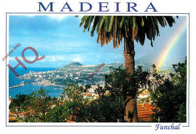 Picture Postcard: Madeira, Funchal, Rainbow