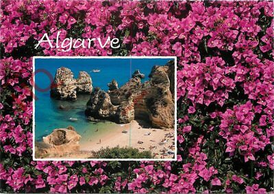 Picture Postcard:;Algarve, Pink Flowers