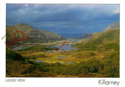 Picture Postcard; Killarney, Ladies' View