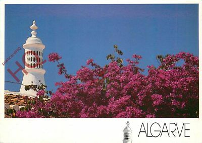Picture Postcard, Algarve, Flowers And Rooftop