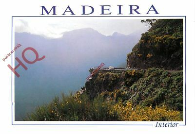 Picture Postcard, Madeira, On The Road To Curral Das Freiras