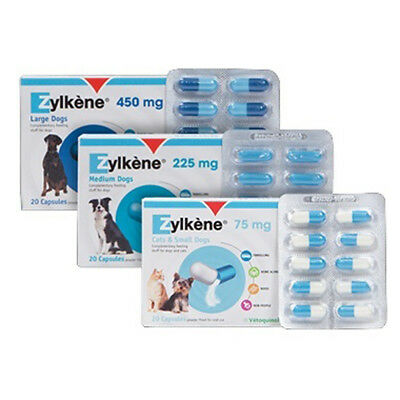 Zylkene 75mg x 20 Stress Relief Capsules for Small Pets