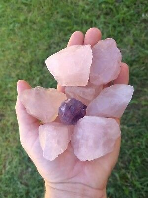 GemFarmer RQL: 3/4 LB Lot of Large Pink Rose Quartz Rough Crystals Heart Chakra