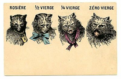 vintage cat postcard French cats young to old innocent to seasoned CAT CHARITY