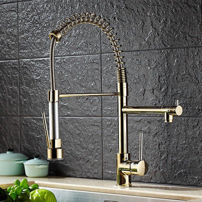 Luxury Pull Out Sprayer Dual Spout Kitchen Filtering Water Mixer Tap Solid Brass
