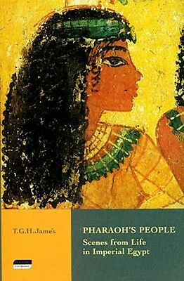 NEW Pharaoh's People Scenes Ancient Egypt Murals Houses Food Law Work Daily Life