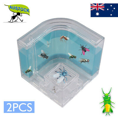 Insects Live Home Ant House Farm Science Natural Ecological Educational Kid Toy