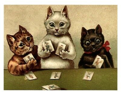 fun modern cat postcard adorable trio of cats playing cards
