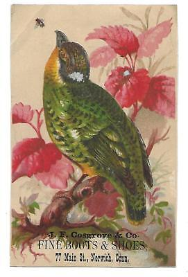 J. F. Cosgrove & Co. Boots & Shoes Victorian Trade Card Norwich Conn. Bird+Fly