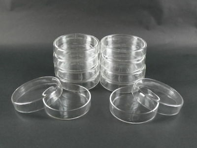 Set of 10 - Borosilicate Glass Petri Dishes w/ Covers 100 mm Diameter