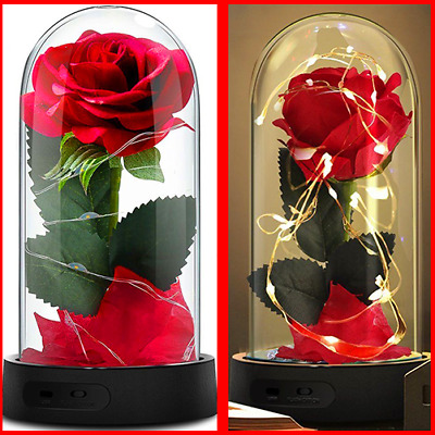 Beauty and The Beast Rose,Enchanted Red Silk Rose Lasts FOREVER Valentines Day