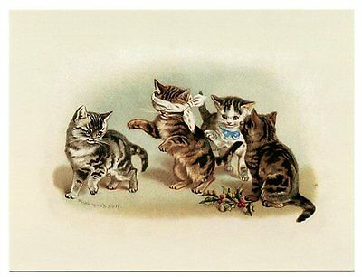 modern cat postcard Maguire cute tabby cats play game of Blind Man's Buff