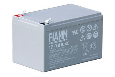 FIAMM 12FGHL48 Batteria AGM ricaricabile al piombo High Rate Long Life serie FGH