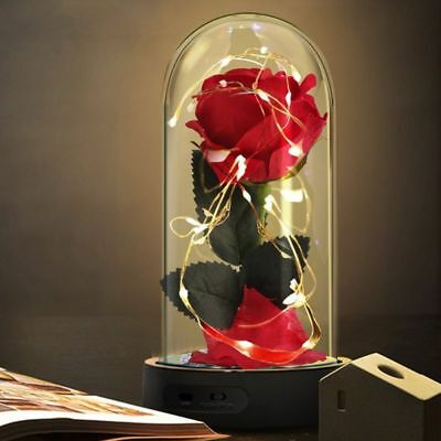 Beauty And The Beast Enchanted Rose Glass Dome Led Valentine'S Day Gift For Her