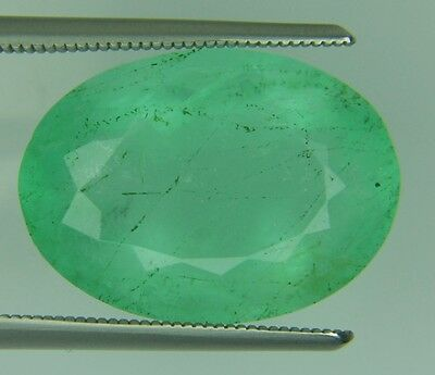 13.77 Ct Natural Fluorite Green Oval Faceted Cut Loose Gemstone12X17Mm Certified