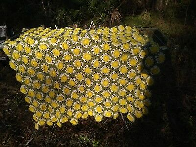 Vintage Hand Made Granny Square 3D Crocheted Daisy Afghan Throw Blanket 54 X 52