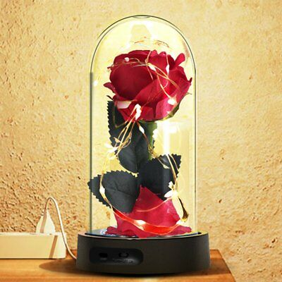 Beauty And The Beast Enchanted Rose LED Glass Dome Valentine's Day Gift For Her