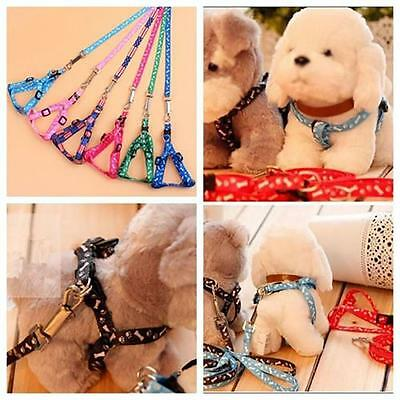 1x Small Pet Puppy Cat Adjustable Nylon Harness with Lead leash Traction Rope Bя