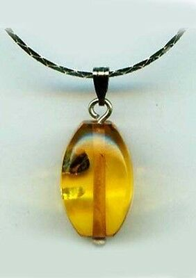 Antique 6½ct Russian Baltic Amber Gem Ancient Assyria Etruria Phoenicia Egypt Ur