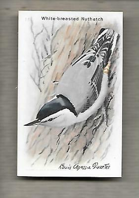 Arm & Hammer Useful Birds Of America 9th Series 15 White Breasted Nuthatch g1277