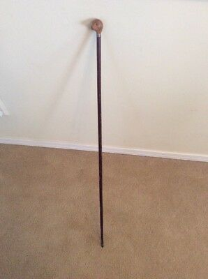 Small Vintage resin Dog head handled wood walking cane or walking stick,32""