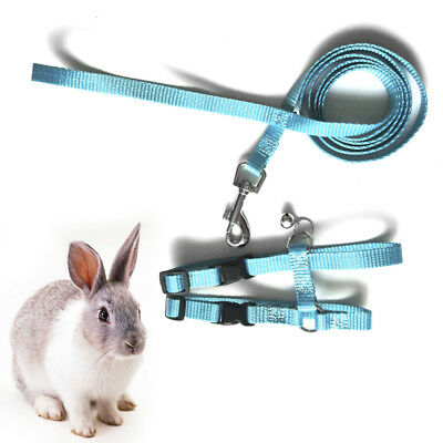 Rabbit Traction Rope Pet Tuna Tractor Bunny Rabbit Safty Belt Harness Leashes US