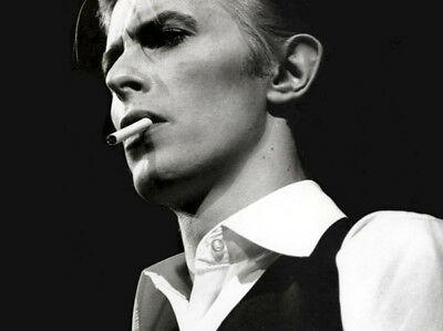 David Bowie UNSIGNED photograph - L2384 - SEXY!!!! - NEW IMAGE!!!!