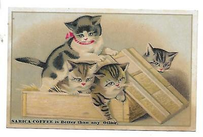 Mansfield, Oh Sarica Coffee  Victorian Large Trade Card 4 Kittens In Box Cats