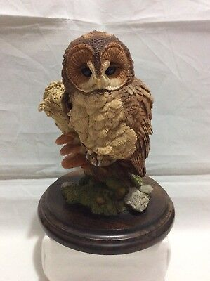 Country Artists Tawny Owl CA537.      #14
