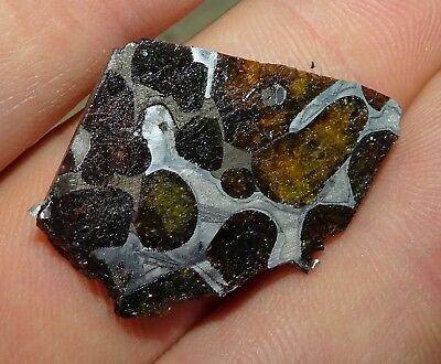 Beautiful Translucent 8 Gm Etched Sericho Habaswein Pallasite Meteorite Slice