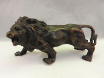A quality bronze lion early 1900's looking to the left roaring. 16 cm long