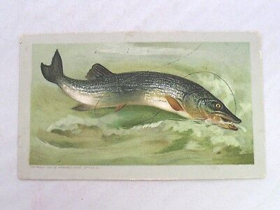 Vtg Arbuckle's Ariosa Coffee Victorian Trade Card with Pickerel Fish & Recipes