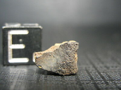 NWA 4775 Official Meteorite LL5-S2-W1 - G004-0006 - 0.74g w/COA - EXTREMELY RARE