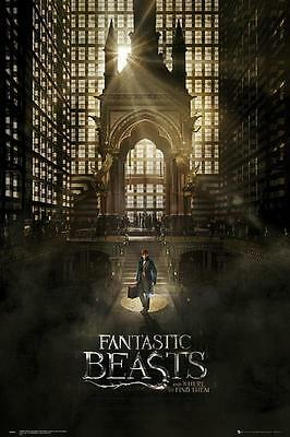Fantastic Beasts One Sheet 1 Maxi Poster 61cm x 91.5cm new and sealed