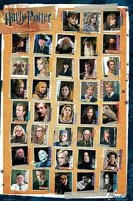 Harry Potter 7 : Characters - Maxi Poster 61cm x 91.5cm new and sealed