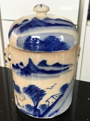 19th Century Blue and White Jar