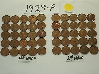 1929-P Solid Date Pennies=Roll 50 Lincoln Wheat Cents